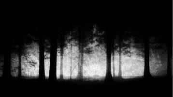 spooky-trees-shutterst_fmt-jpeg